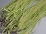 Шнурок двойной с органзой салатовый  #00692
