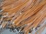 Шнурок двойной с органзой коралловый #01634/11
